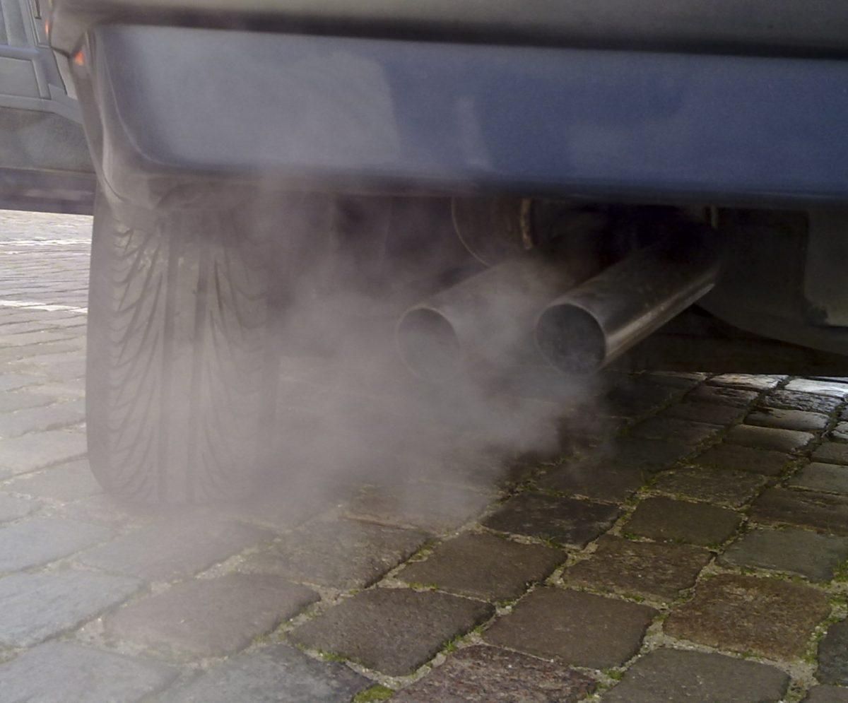 Compenseer je CO2-uitstoot bij de CO2 Bank Utrecht