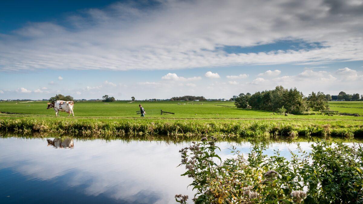 Provincie stelt half miljoen euro subsidie beschikbaar om het landschap te verfraaien
