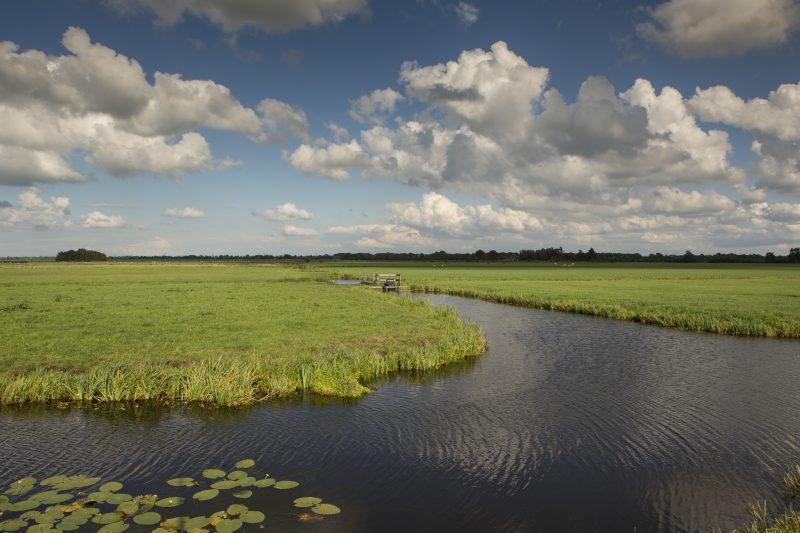 Valuta voor Veen in provincie Utrecht: kansrijk en complex