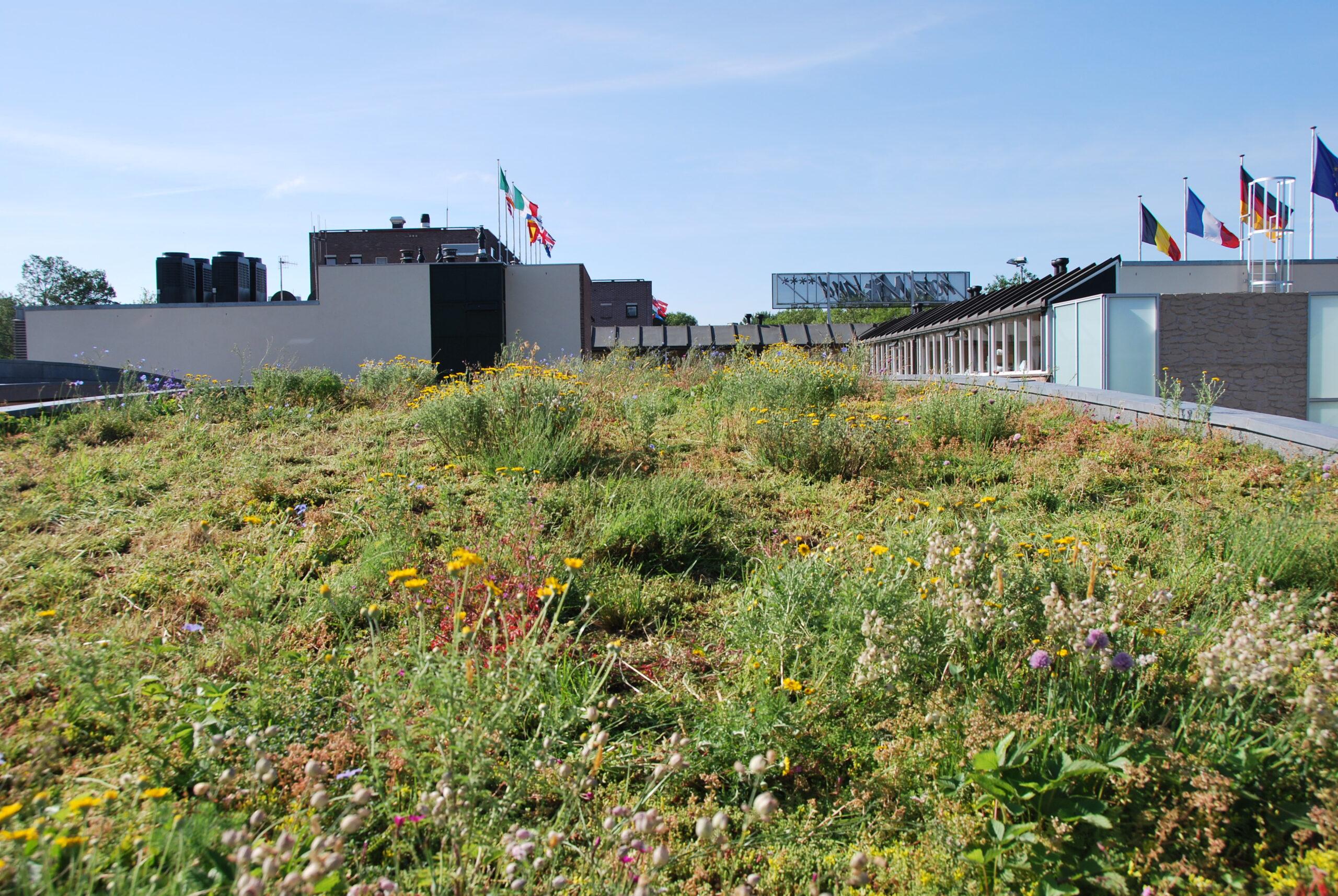 Het groene dak van hotel Mitland in Utrecht