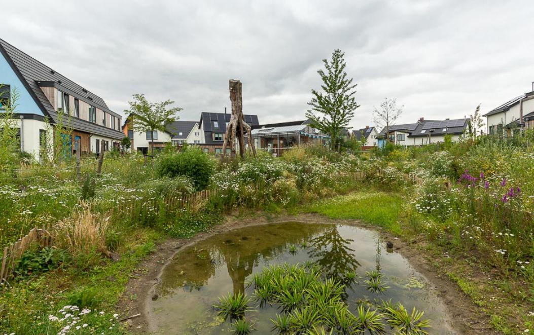 NMU lanceert Klimaatagenda voor een groene klimaatbestendige provincie Utrecht